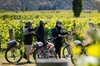 Gibbston Valley Guided Wine & Cycle Tour