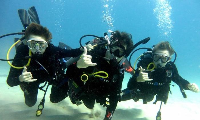 518cb8b7c8 Discover Scuba Diving from Waikiki