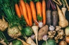 Succulent Root Vegetables