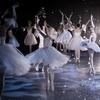 Marat Daukayev Ballet Theatre's The Nutcracker