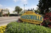 Chicago's Andersonville Neighborhood Walking Tour with Local
