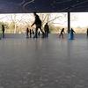 Lakeside Brooklyn Roller Skating