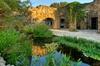 Lady Bird Johnson Wildflower Center - Austin: Lady Bird Johnson Wildflower Center Day Pass