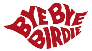 The Palace Theatre: Bye Bye Birdie at The Palace Theatre