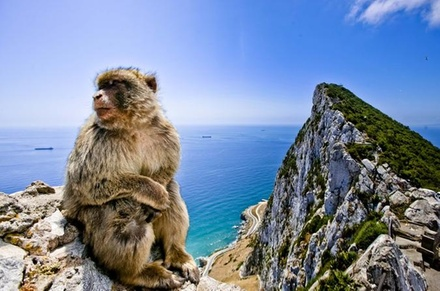 Escapada de un día a Gibraltar y Bolonia desde Cádiz