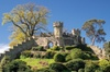 Stratford upon Avon & Warwick Castle 10 hours Tour for 5-8 Travellers