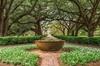 New Orleans: Oak Alley Plantation & Airboat Swamp Tour