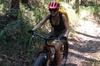 Noosa Hinterland Scenic FAT Bike Tour
