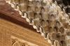 Alhambra: Selecta excursión para grupos pequeños con guía turístico...