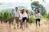 Recorrido guiado de un día a las bodegas de vino Torres, Montserrat...