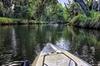 Hobie Mirage Drive Pedal Kayak Rental