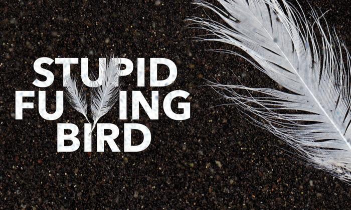 Pearl Theatre -New York - Hell's Kitchen: Stupid F**king Bird at Pearl Theatre -New York