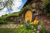 Private Luxury Tour From Auckland to Hobbiton Movie Set and Rotorua...