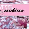 """Steel Magnolias"" - Saturday March 11, 2017 / 8:00pm"