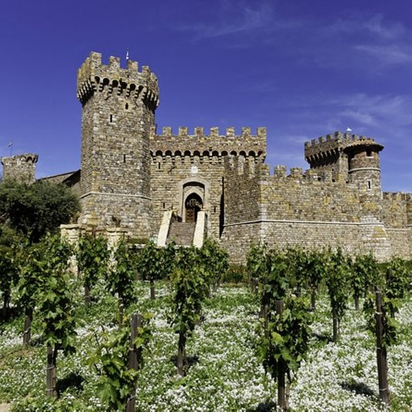 castle winery napa coupons