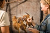 Adelaide Zoo Behind the Scenes Experience - Meet the Primates