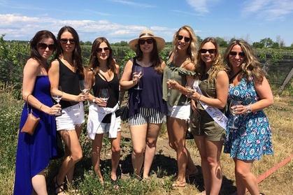 Half Day Wine & Cheese Tour - Niagara On The Lake Wine Tour