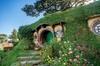 Hobbiton Day Tour