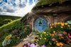 Hobbiton & Waitomo Small Group Tour with BBQ Buffet Lunch from Auck...