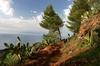 Recorrido por la noroeste agreste de La Gomera