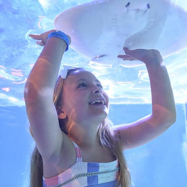 SeaQuest Aquarium Lynchburg - Up To 20