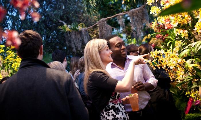 New York Botanical Garden - Bronx Park: Orchid Evenings at New York Botanical Garden