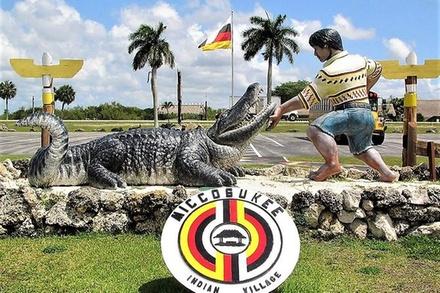 Everglades Micoosukee Indian Village Air Boat Ride + Elegatore Show