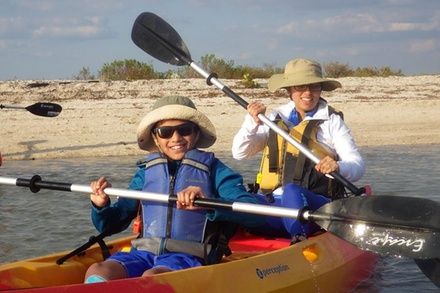Small Group Boating & Kayaking Guided Eco Tour in Everglades National Park