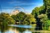 Private Tour: London Sightseeing Walking Tour