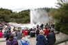 Waiotapu Geothermal Shore Excursion Private Tour up to 8 passengers
