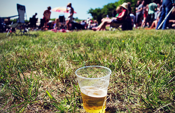 Summer Festival Craft Beer Pairings Music