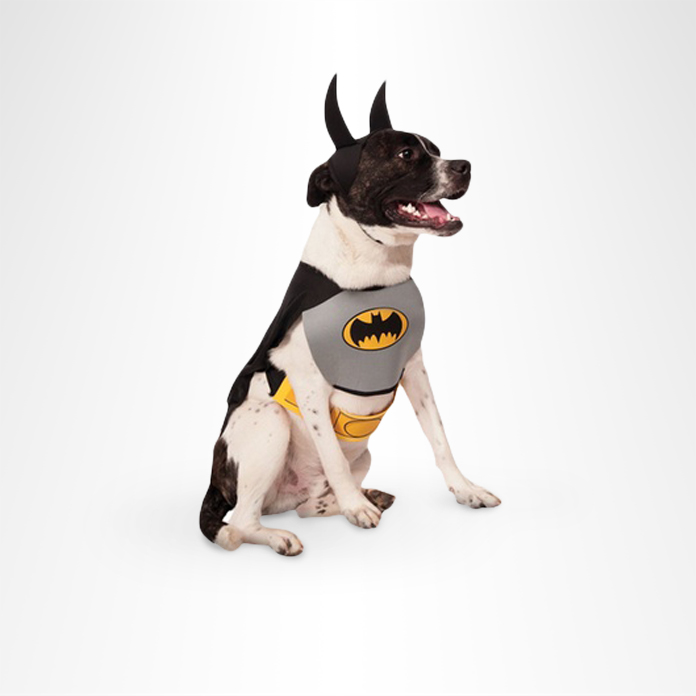 10 Adorable Halloween Costumes For Dogs f1b67cef5
