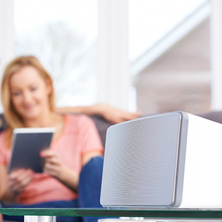A Guide to the Best Bluetooth Speakers