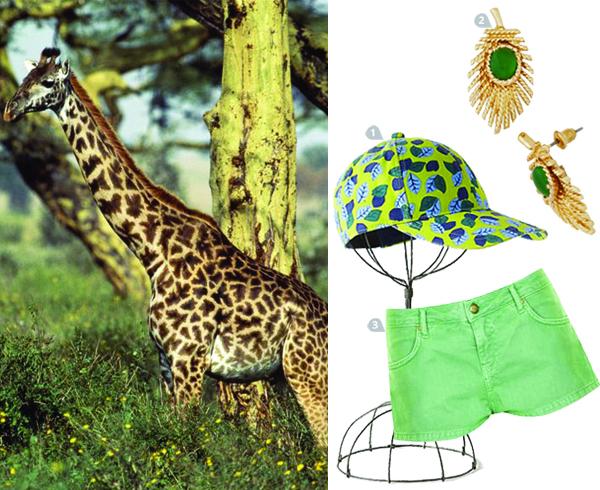 dress-to-impress-a-warthog_giraffe_600c490