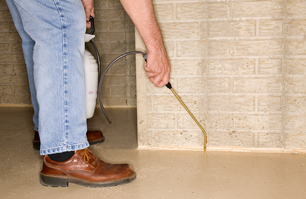 When Should You DIY Pest Control?