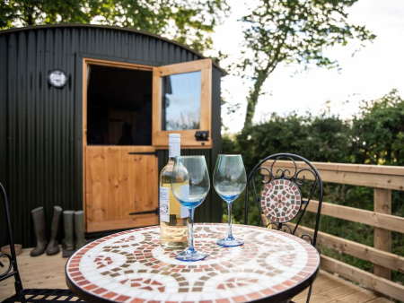 cheap dog friendly cottage for couples lake district
