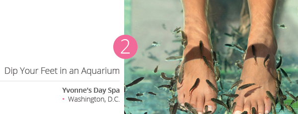 Dip Your Feet in an Aquarium at Yvonne's Day Spa