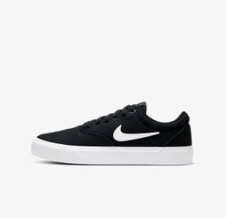 Nike SB Zoom shoes