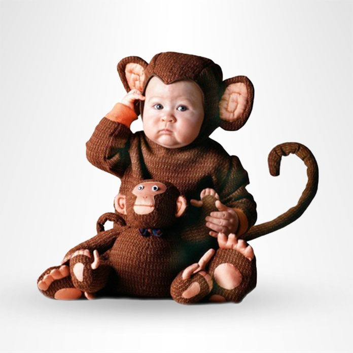 Baby in a monkey costume holding a toy monkey