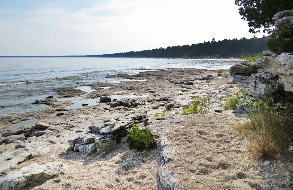 Rugged Cliffs and Ripe Cherries in Door County's Peninsula State Park