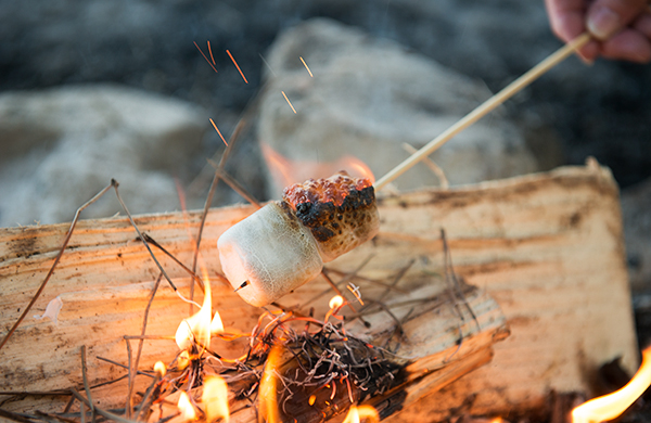 roasted-marshmallows-are-so-over-smores_classic_600c390
