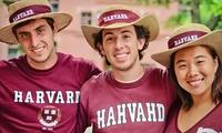 Trademark Tours  Harvard