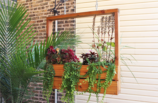 Chicago Style U0026 Beauty: Vertical Gardens And Sustainable, Small ...