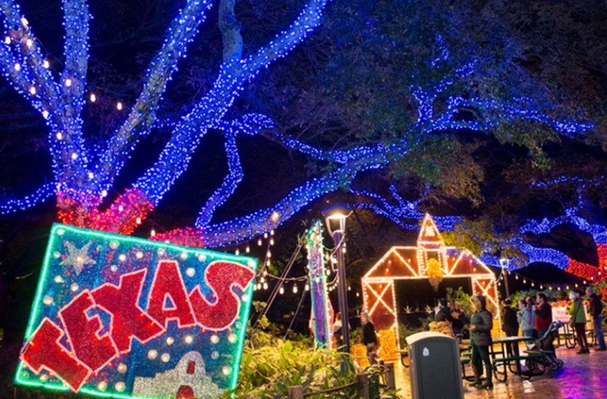 Why You Should Visit Houston Zoo Lights