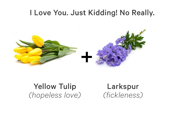 A Guide To Flower Meanings And Symbolism