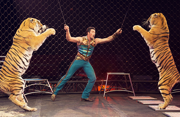 Ringling Bros.' Alexander Lacey on Training Big Cats Tigers