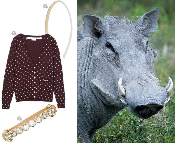 dress-to-impress-a-warthog_wart_600c490