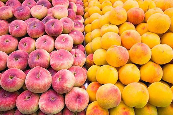 Mercado Central Valencia Fruta