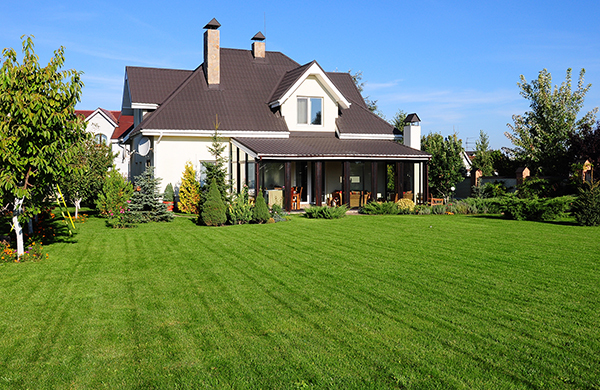 Why Lawn Aeration Is the Key to a Healthy Backyard