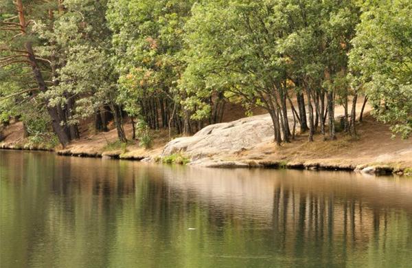 Las piscinas naturales en madrid for Cuando abren las piscinas en madrid
